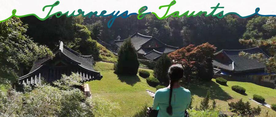 3 Lies and 3 Truths About Biking Through South Korea
