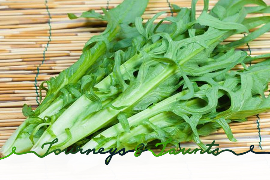 sow thistle - the must-eat during Grain Buds, 8th out of 24 Chinese Solar terms